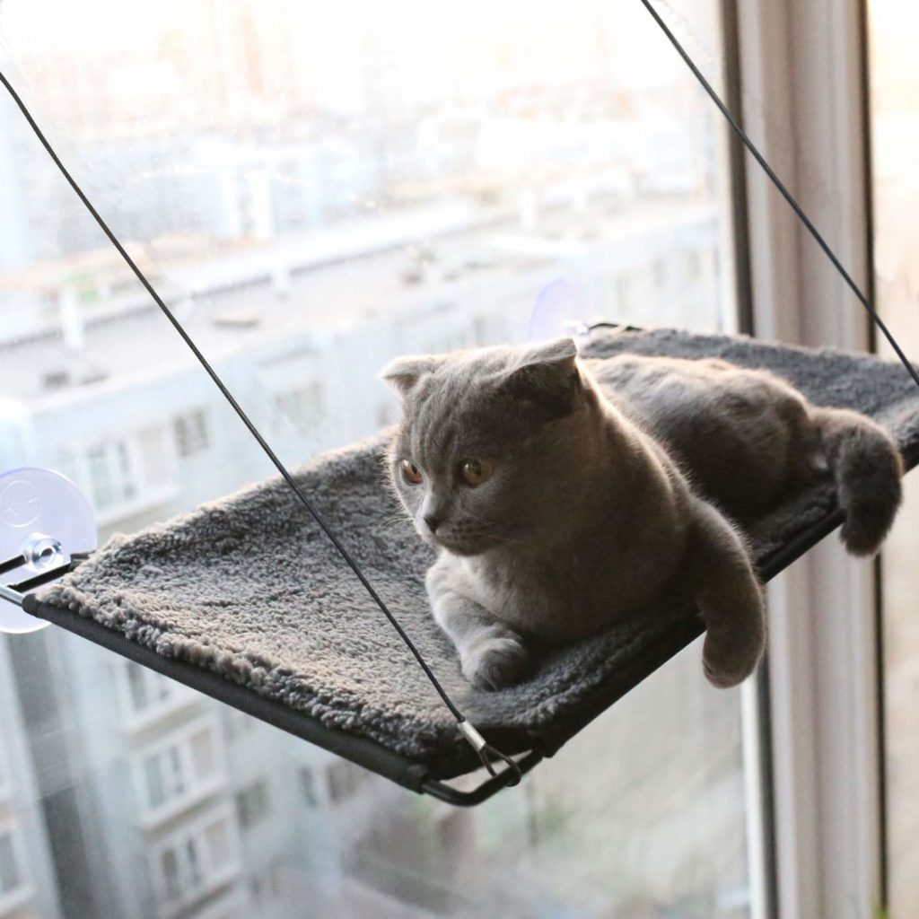 Mounted Cat Bed