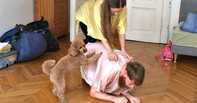 performance for pets