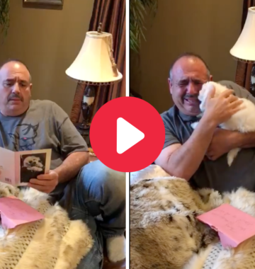 Dad Surprised by Bichon Frise dog.