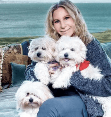 Barbra streisand cloned her dogs