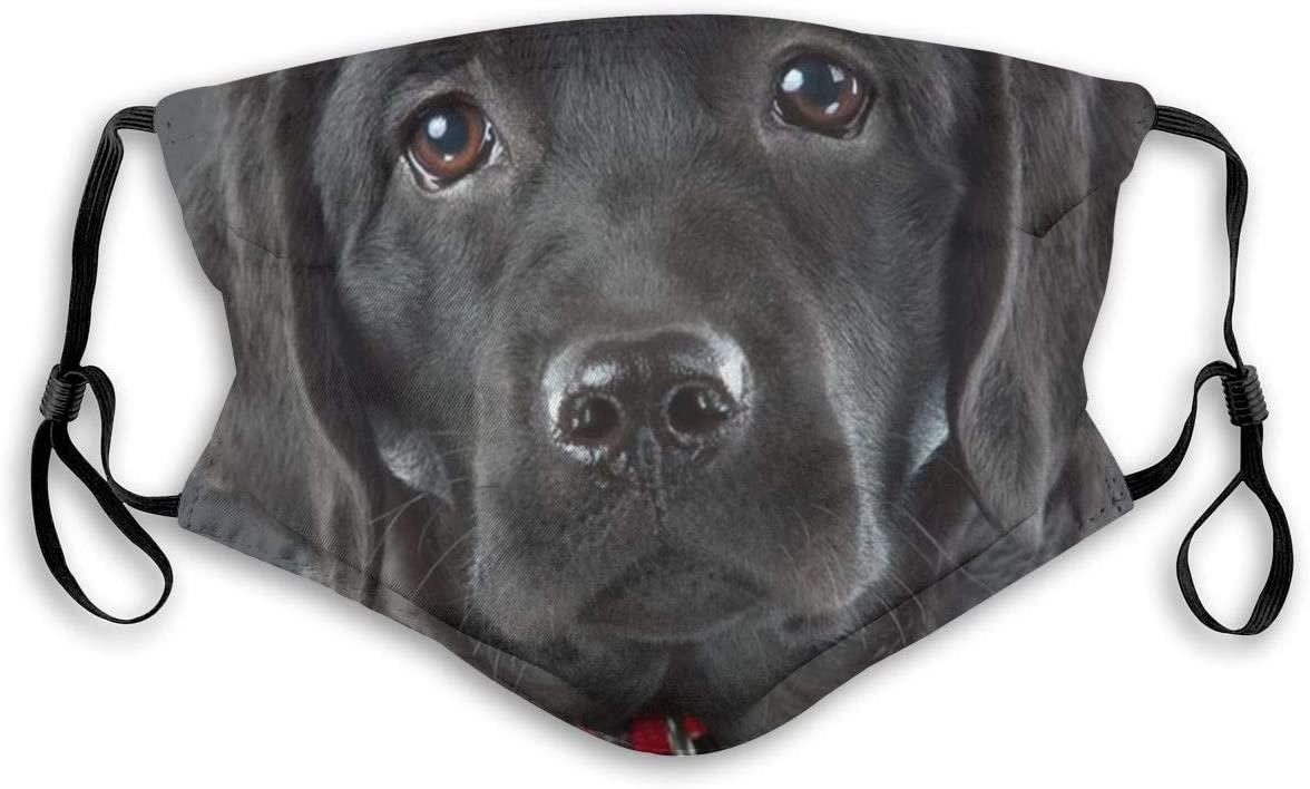 Face Mask Dog Black Labrador Retriever Snout Eyes Nose Balaclava Bandanas with Filter for Women Men Personalized